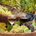 A magyar bor dícsérete