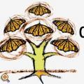 CASA IBEROAMERICANA - egy kulturális startup lehetőségei Pécsett a XXI. században