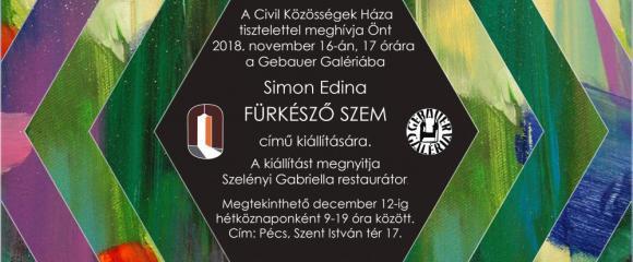 """Simon Edina festőművész """"A fűrkésző szem"""" c. kiállítása"""
